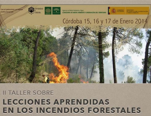 II Taller sobre Lecciones Aprendidas de los Incendios Forestales
