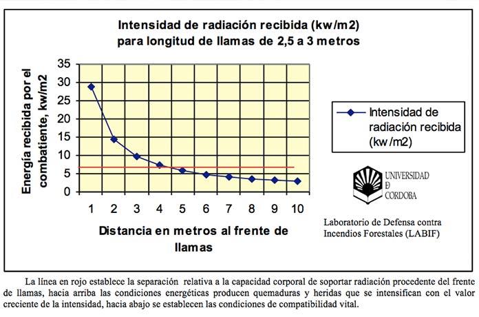 FOTO 4: Gráfico de distancia de seguridad