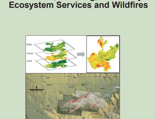 Economía y planificación en los programas de defensa contra incendios forestales.