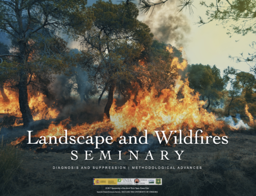 LANDSCAPE AND WILDFIRES, DIAGNOSIS AND SUPPRESSION